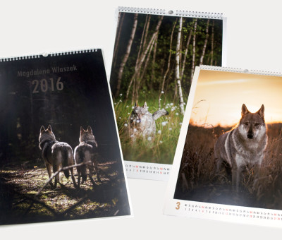 kalendarz 13-kartkowy, format A3